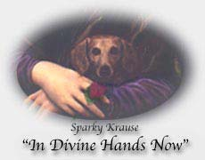 Sparky in Divine Hands